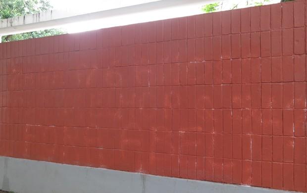 muro laranjeiras pichação (Foto: Edgard Maciel de Sá)