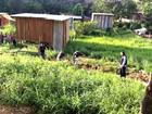 Homem é encontrado morto em córrego na Zona Leste de Manaus