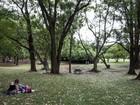 Prefeitura suspende contratos com seguranças de parques de SP