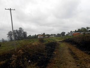 Fogo atingiu mato próximo de rodovia em área em Charqueada (Foto: Salete Antonelli/Arquivo pessoal)