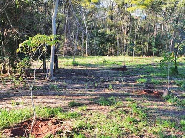 Área também deve receber trilha e iluminação pública (Foto: Prefeitura de Presidente Prudente/Divulgação)
