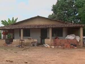 Macacos foram encontrados mortos em fazenda na zona rural de Alagoinhas, na Bahia (Foto: Reprodução/ TV Subaé)