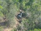 Helicóptero cai em Jaguaripe, na Bahia, e deixa feridos, diz polícia