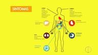 Confira os sintomas causados pela febre amarela