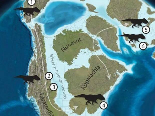 América do Norte estava separada por um mar pouco profundo  (Foto: Nick Longrich/Divulgação)