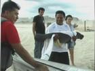 Filhotes de peixe-boi são resgatados em Tefé, no interior do Amazonas