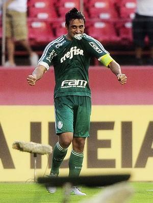 Robinho comemora gol do Palmeiras (Foto: Marcos Ribolli)