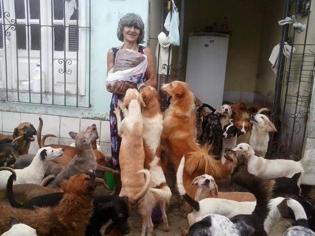 Idosa mantem cerca de 300 animais com a ajuda de duas madrinhas. (Foto: Divulgação)