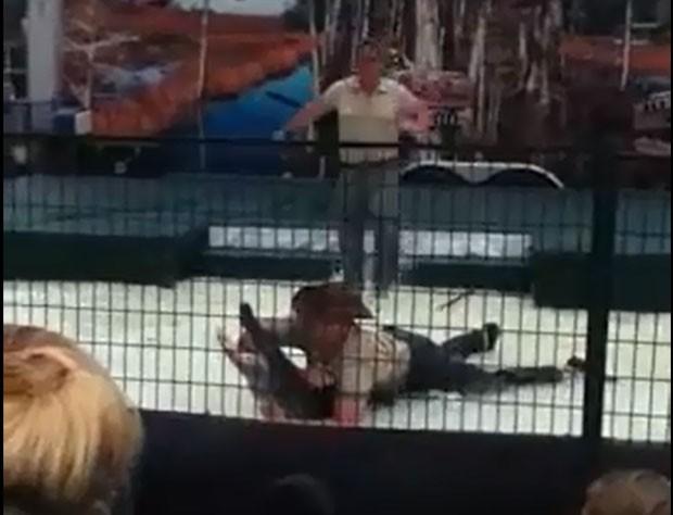 Aligátor mordeu braço de manipulador durante show. (Foto: Reprodução)