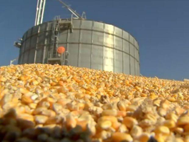 Em Nova Mutum, milho estocado fora do silo preocupa agricultor (Foto: Reprodução/TVCA)