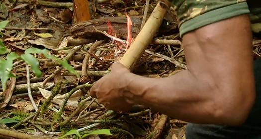 hoje é dia de sobrevivência na selva (Reprodução TV)