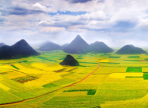 10-lugares-coloridos-luoping-county-china-plantas-canola (Foto: Thinkstock)