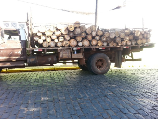 Caminhão estava carregado com m (Foto: Divulgação / Guarda Municipal de Itararé (SP))