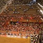 Camarote serve 3 mil litros de chope (Érico Andrade/G1)