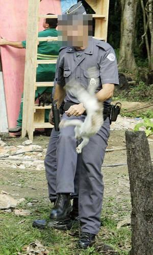 Cabo da PM é afastado após chutar gato em operação no litoral de SP (Foto: Reginaldo Pupo/ Agência Facto)