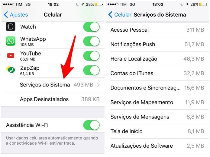 Toque em Serviços do Sistema e veja as funções do iOS que mais consomem dados no iPhone (Foto: Reprodução/Lucas Mendes)