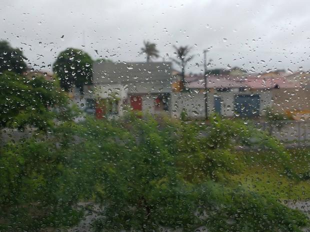Chova todos os dias em Campo Grande desde o início do ano (Foto: Juliene Katayama/G1 MS)