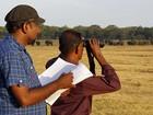 Sri Lanka começa a contar seus elefantes selvagens