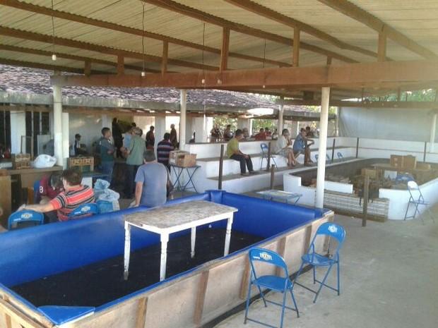 Local tinha estrutura para arenas e espectadores (Foto: Assessoria de Imprensa / Polícia Militar)