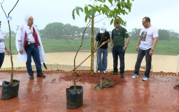 Servidores plantaram 16 mudas de ipê amarelo na margem do Rio Acre visando a proteção do rio (Foto: Bom Dia Amazônia)