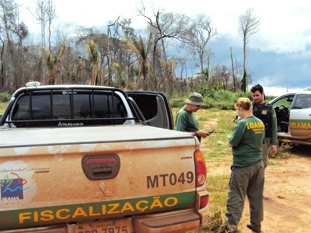 Iniciada esta semana, a operação Sangue Verde tem como principais alvos de fiscalização quatro fazendas no entorno da Terra Indígena Manoki (Foto: Ibama-MT/Ascom)