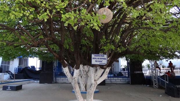 Fãs visitam Parque Aza Branca para ver relíquias de Gonzagão (Luna Markman/G1)