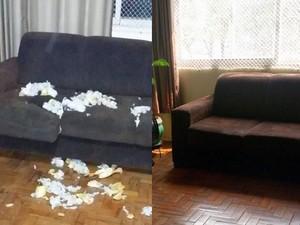 A assistente administrativa Maria Helena Mesquita trocou os salgados por uma reforma no sofá (Foto: Arquivo pessoal / Maria Helena Mesquita)
