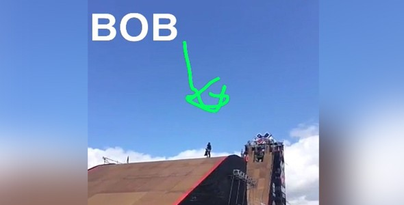 Bob (Foto: Divulgao)