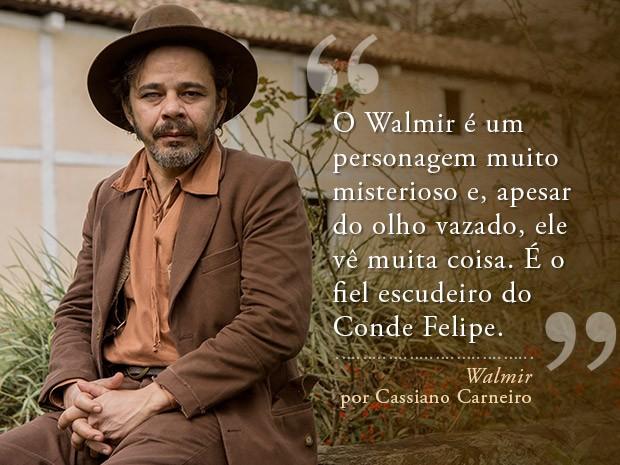 Walmir (Foto: Fábio Rocha/Gshow)