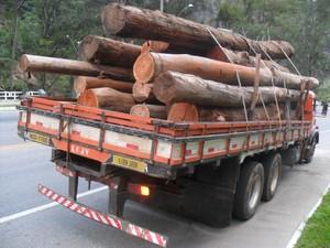 O caminhão transportava 12 toneladas de madeira (Foto: UPAm Três Picos/Divulgação)