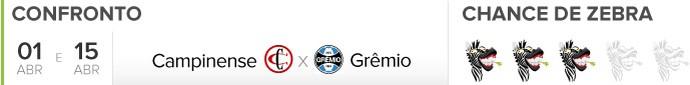 Zebrometro Campinense x Gremio (Foto: infoesporte)