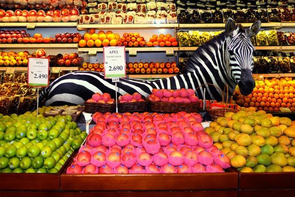 Zebra em foto da séria 'Garden Fresh'. (Foto: Agan Harahap)