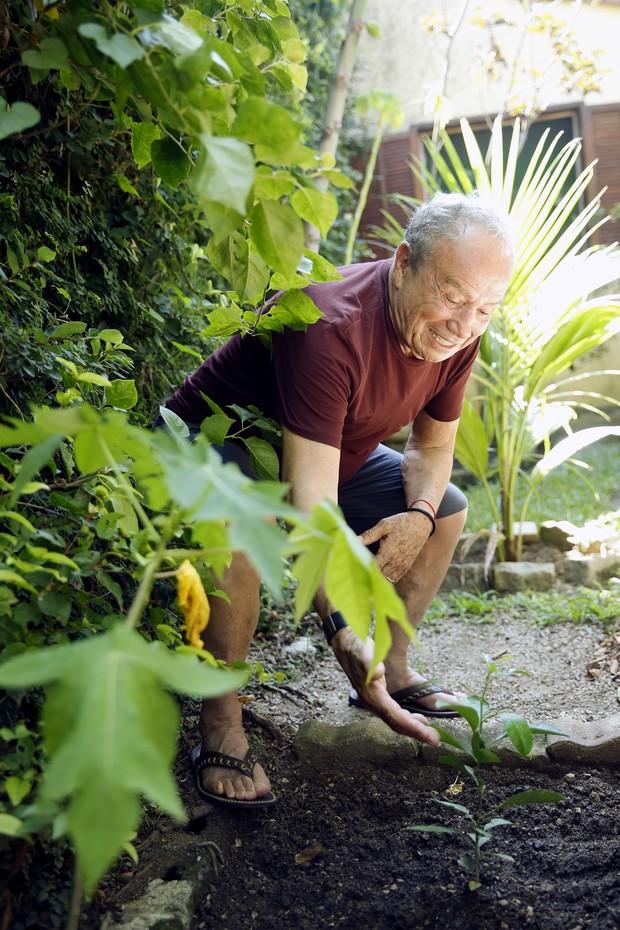 Stênio Garcia e a árvore em homenagem a Marília Pêra (Foto: Marcos Serra Lima/EGO)