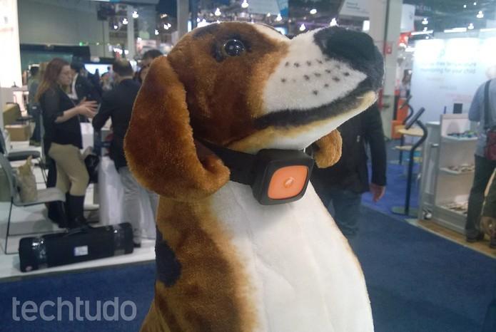 Coleira inteligente da Motorola (Foto:Elson de Souza/TechTudo)