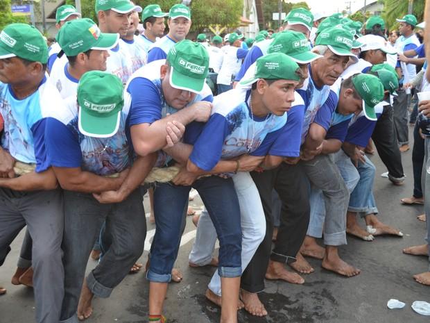 Cordeiros durante a procissão (Foto: Andressa Azevedo/G1)