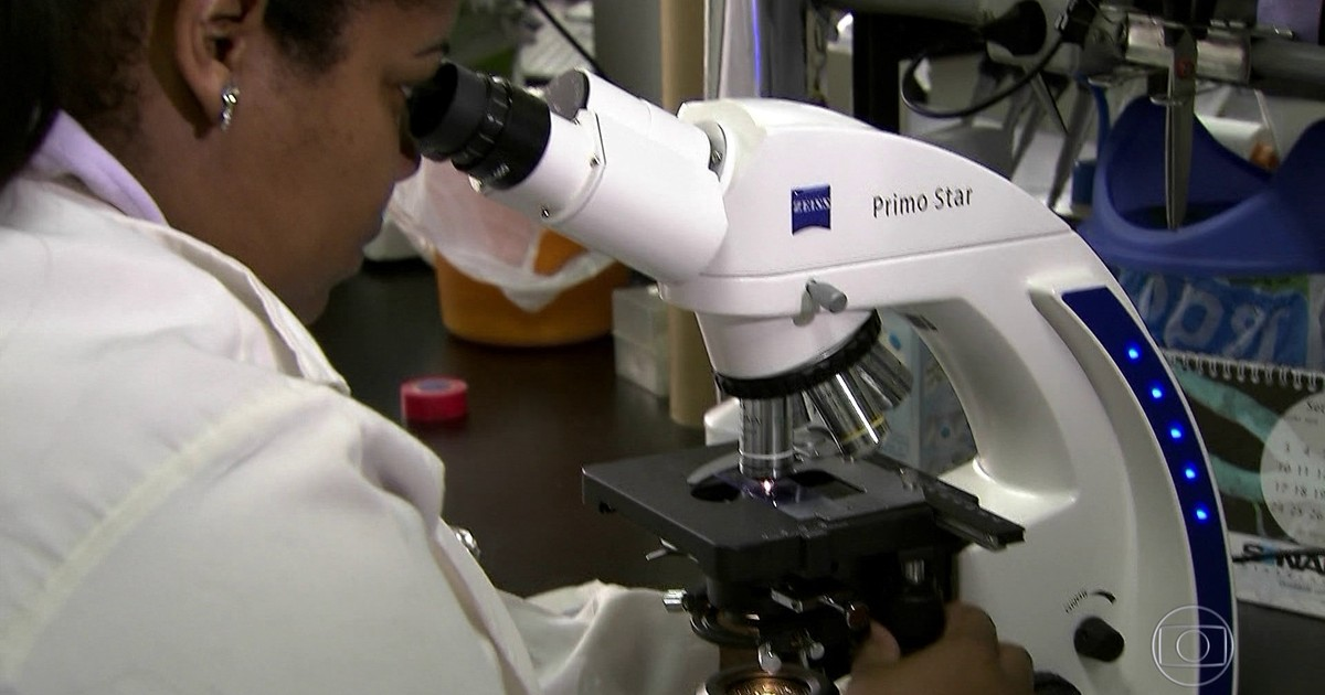 Falta de recursos para pesquisas ameaça futuro da ciência no Brasil