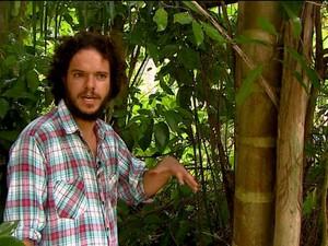 Pedro planta até palmito de pupunha em sítio de Caconde (Foto: Rodrigo Sargaço/EPTV)