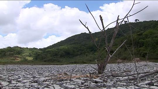 Devido à seca, moradora de PE deixa de comprar comida para ter água
