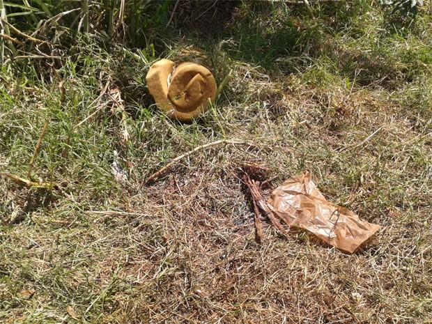 Pedaços de pau e colchão de espuma foram encontrados ao lado do corpo da égua (Foto: Divulgação/Secretaria do Meio Ambiente de Sertãozinho)