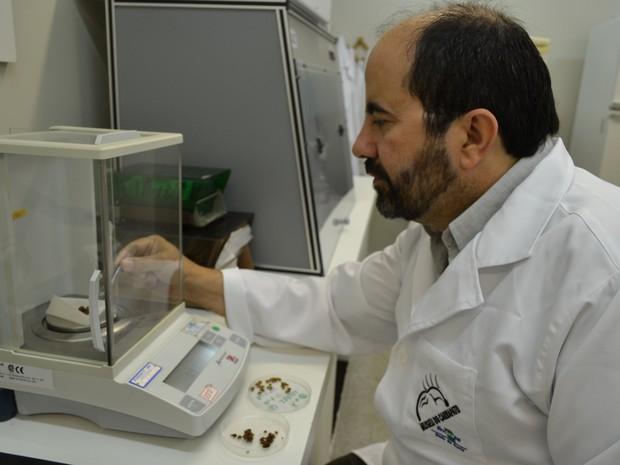 Renato Andreotti, pesquisador da Embrapa Gado de Corte, que estuda os carrapatos (Foto: Dalizia Aguiar/Embrapa Gado de Corte)