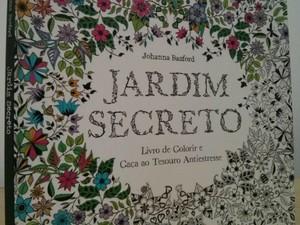 Livro de colorir para adultos gera sensação de bem estar, dizem adeptos (Foto: Cláudio Nascimento/ TV TEM)