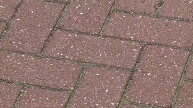Pesquisadores holandeses criam pavimento que absorve poluição (Foto: BBC)