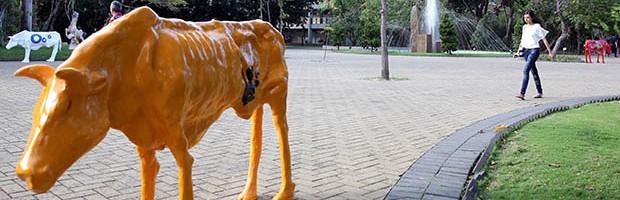 Intervenção urbana 'Vacas Magras' alerta sobre os efeitos da seca no Ceará (Ares Soares/Unifor)