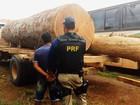 Fiscalização apreende madeira ilegal na rodovia Transamazônica
