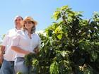 Família mantém tradição na produção de café há 120 anos no Sul de Minas