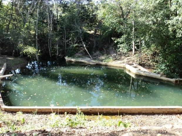 G1 homem multado por destruir mata para construir - Construir piscina natural ...