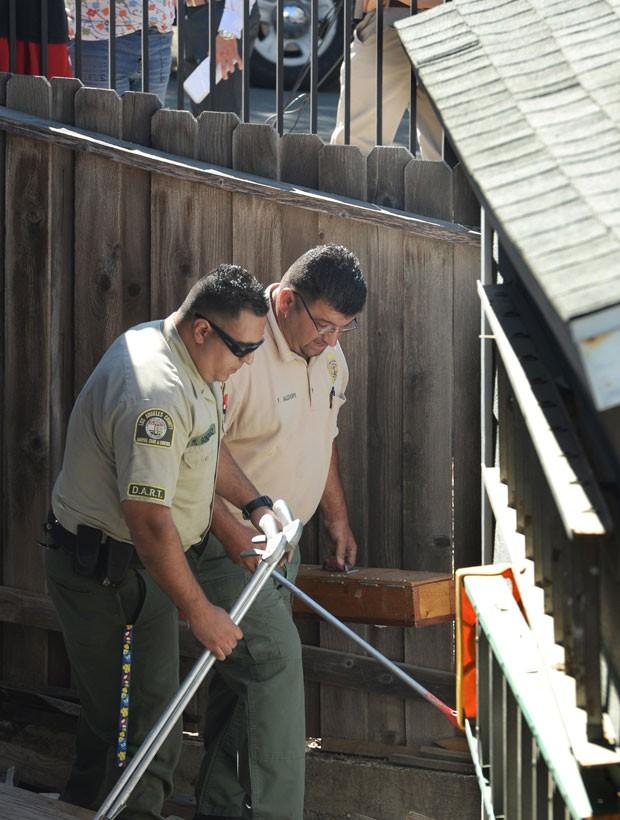Autoridades tinham feito operação após cobra ser vista na noite de quarta-feira em Thousand Oaks  (Foto: Chuck Kirman/Ventura County Star/AP)