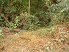 Cabeleireiro é encontrado morto e amordaçado em serra de MT