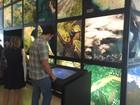 Museu do Amanhã abre as portas ao público a partir deste sábado