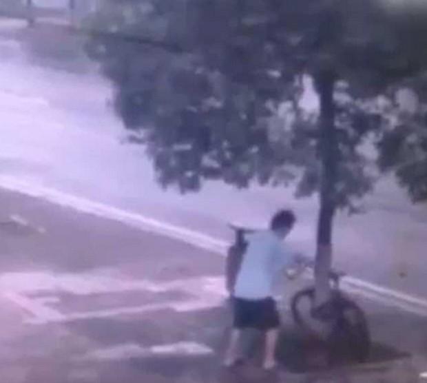 Ladrão cortou árvore para conseguir roubar bicicleta na China (Foto: Reprodução/YouTube/CCTV News )